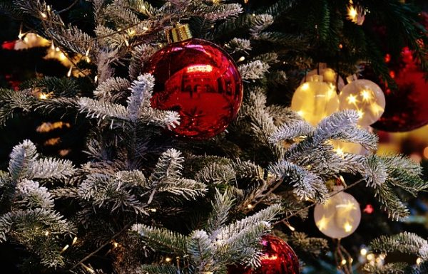 Trendy Red Christmas Trees – Different Options for Your Indoor and Outdoor Decoration